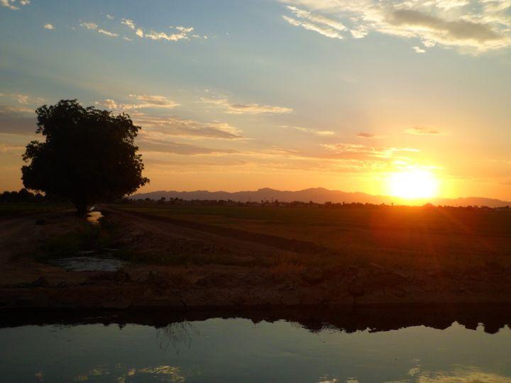 Farm Sun - Jared Keener Photography