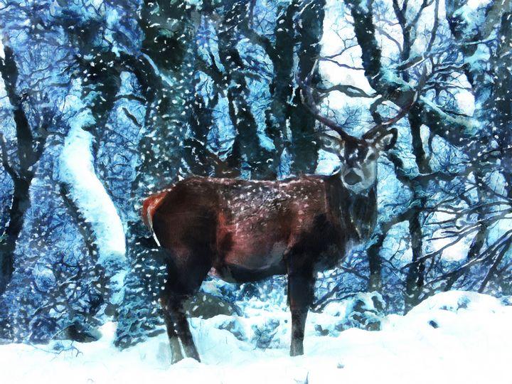 Beautiful deer - Black Morion