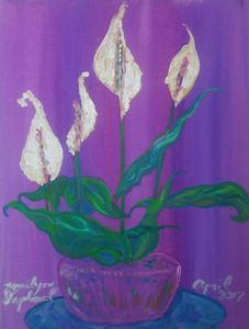 Glowing Peace Lilies