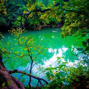 Erie green