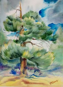Tree of Ages - Suzanne Edmonds