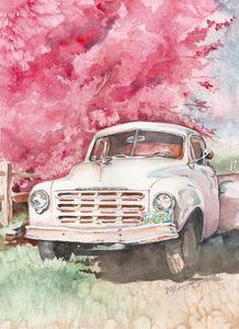 Studebaker - Suzanne Edmonds