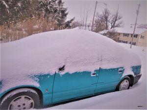Snowed In February 16, 2021