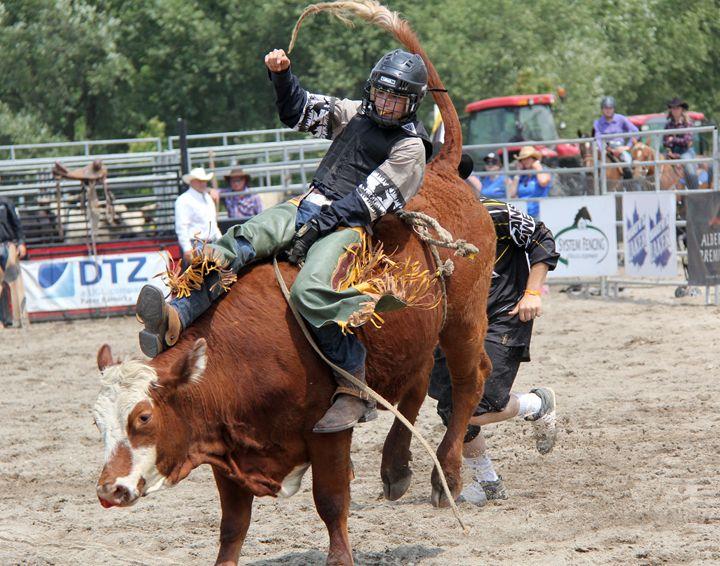 Junior Bull Riding - DC Photography