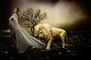 Beauty and the Beast - DC Photography