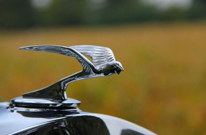 Hood Ornament for 1932 Frontenac - DC Photography