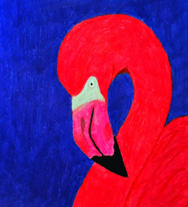 Flamingo - BirdsOfGalaxy