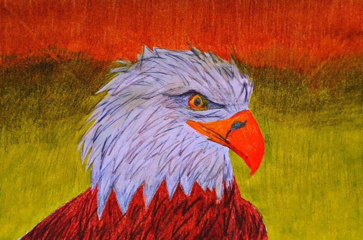 Eagle power - BirdsOfGalaxy