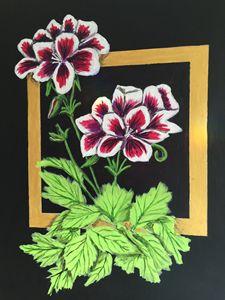 Pelargoniums - Art by Barbara Saul