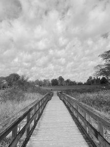 Bridge at Harkness