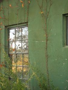 Harkness Window