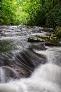 Laurel Falls 10