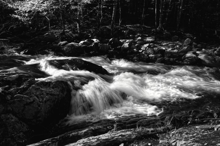 Black And White Little River - Perkins Designs