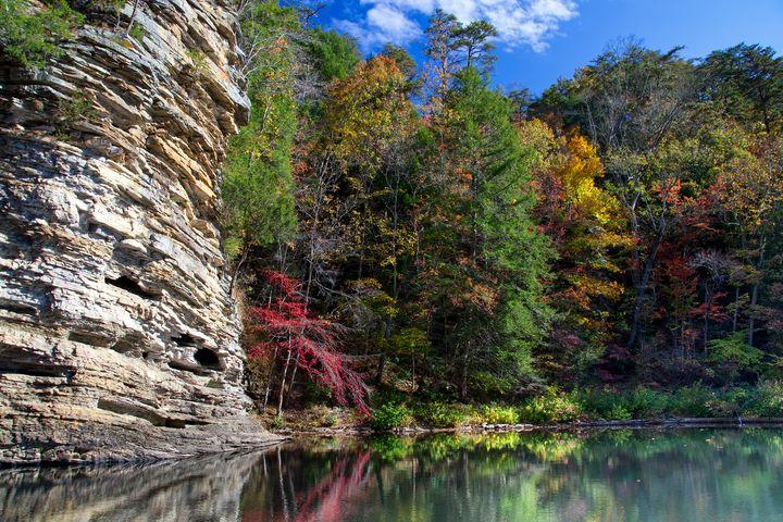 Autumn Reflections - Perkins Designs