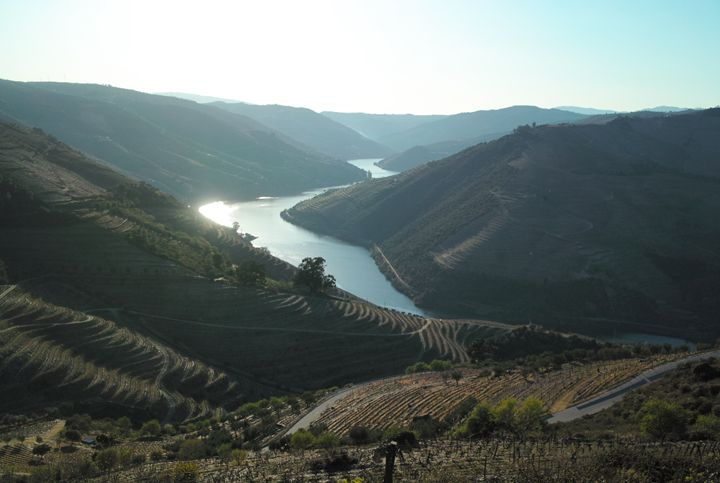 Douro valley - Dream Light