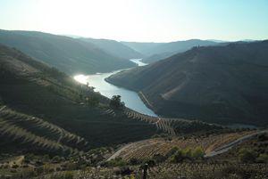 Douro valley - Dream Light