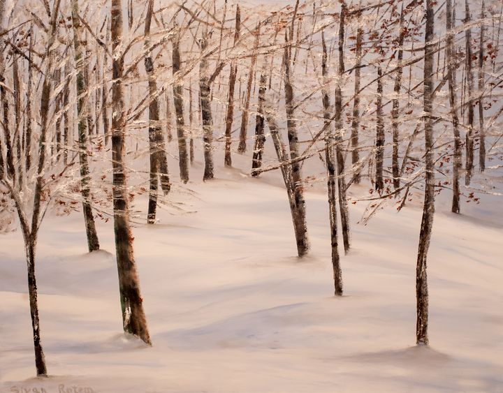 A Snowy Slope, Oil on Canvas - Sivan Rotem's Gallery