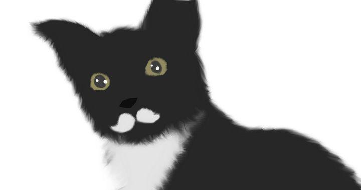 Moustache Cat - DominikJT