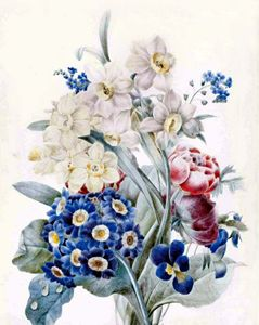 Watercolor Ariculas and narcissis