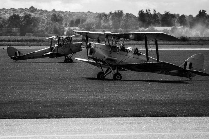 Tiger Moths - Through the lens