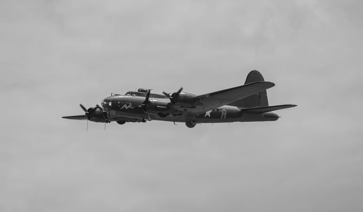 Sally B - Through the lens