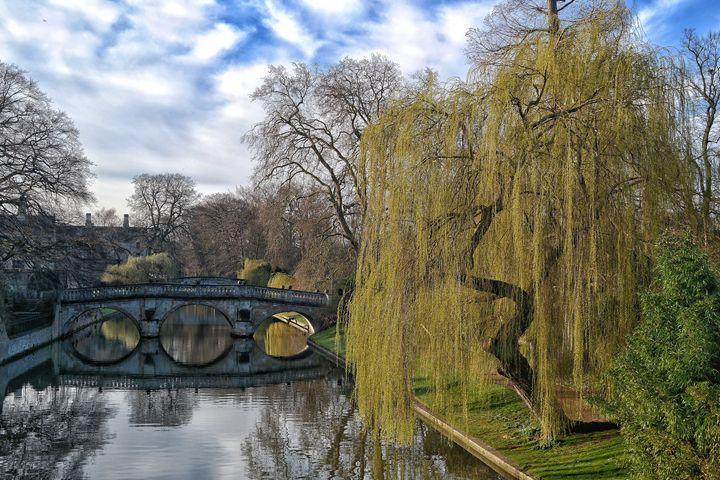 Bridge reflection! - Through the lens
