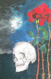 Skull in the night