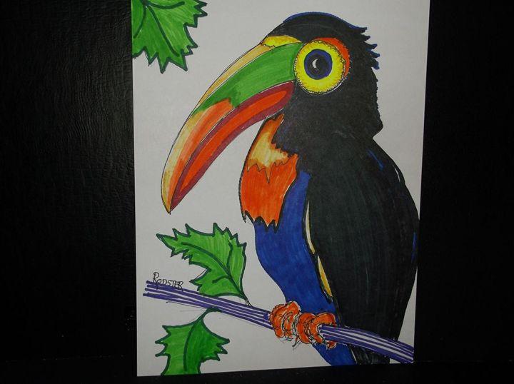 Toucan - Rodster Art