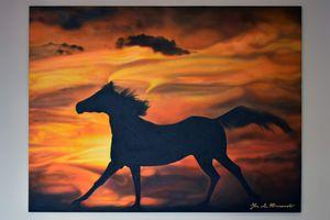 Stallion at Sunset