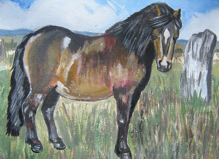 SHETLAND PONY - Lynne Lewis Art