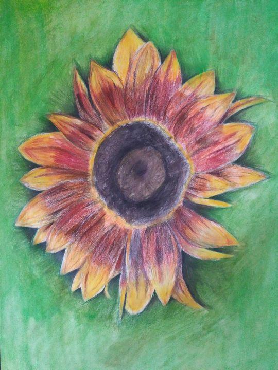 Sunflower - Bohemian Artist