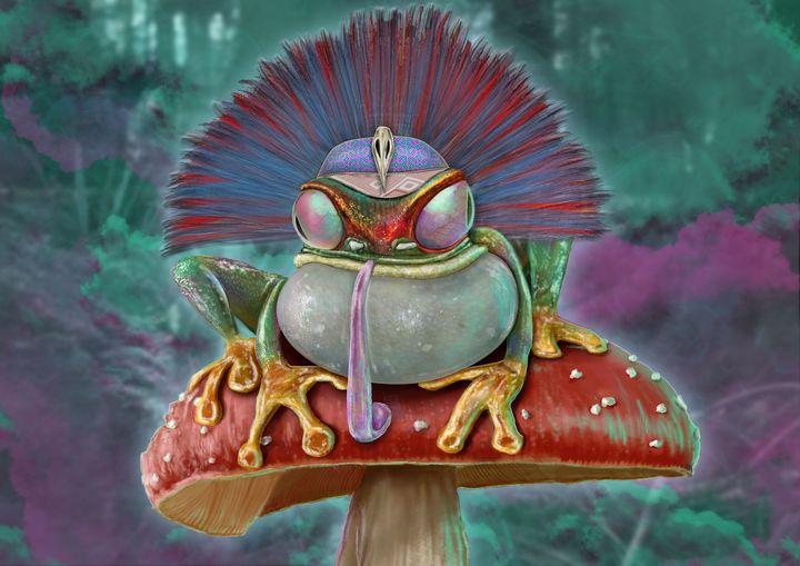 Shamanic frog - nic warner