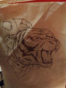 Raging tiger
