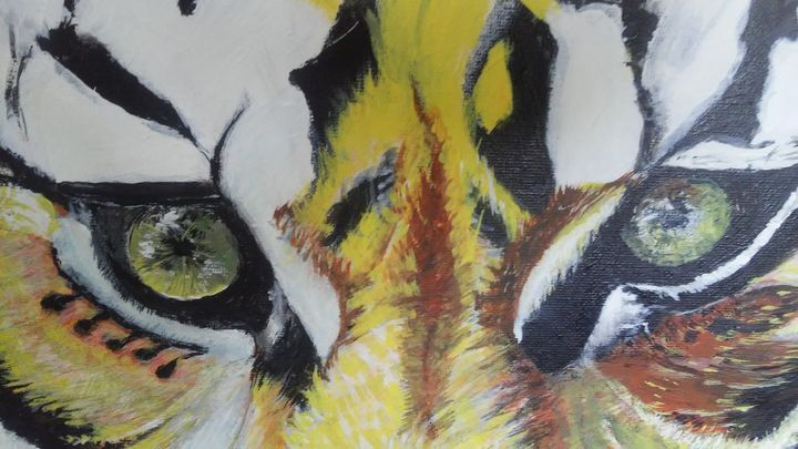 Tiger eyes - Art With Passion