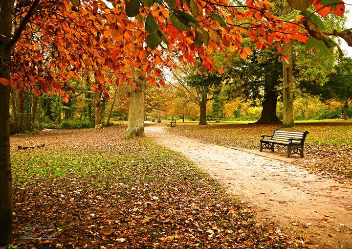 Autumn in Hampden Park - Lionel Fraser, Pictures of Eastbourne, England