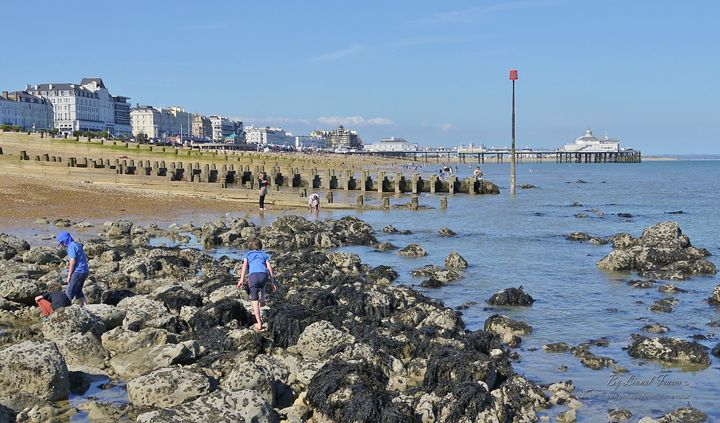 Eastbourne Beach Rock Pools - Lionel Fraser, Pictures of Eastbourne, England