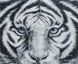 tiger,animal,realism