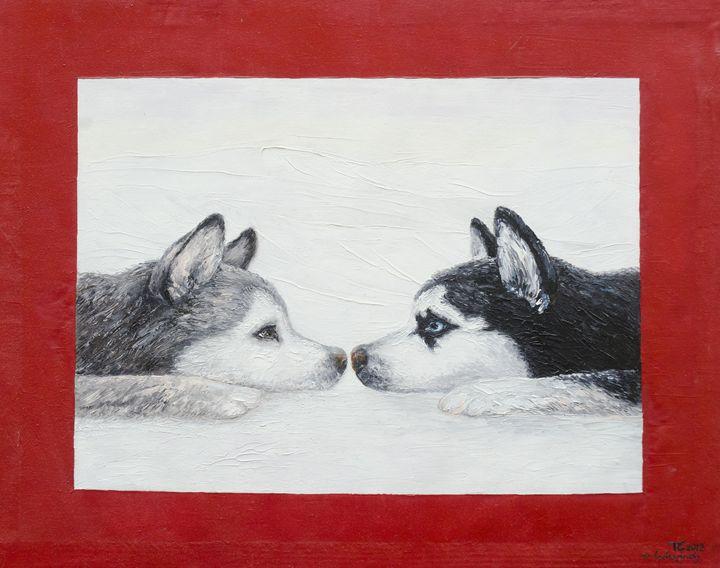 husky - Ia saralidze