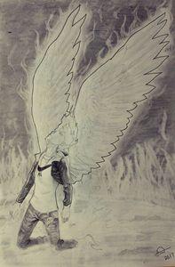 Phoenix - Josh's gallery