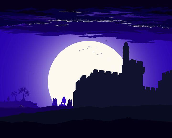 David's Citadel - Ely Greenhut