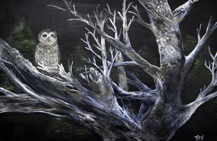 Owl in tree - Tyson environmental art