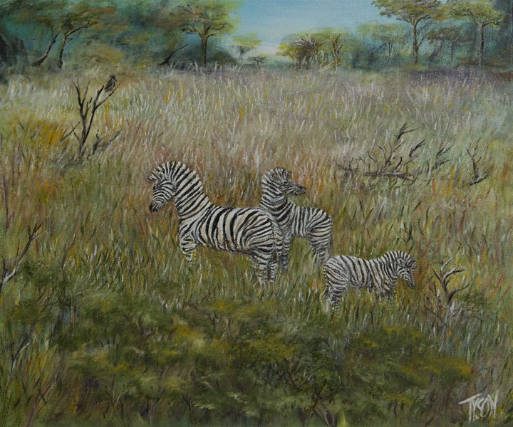Zebra gathering - Tyson environmental art