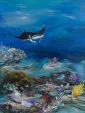 30 x 40 manta ray painting