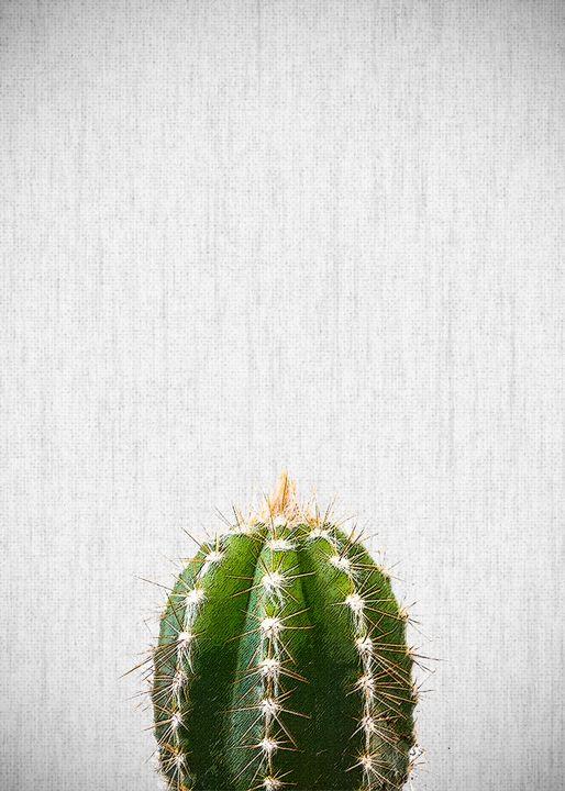 PLANTS10 - FARKI_DESIGN