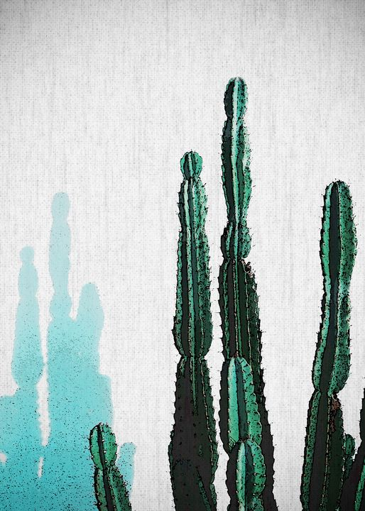 PLANTS14 - FARKI_DESIGN