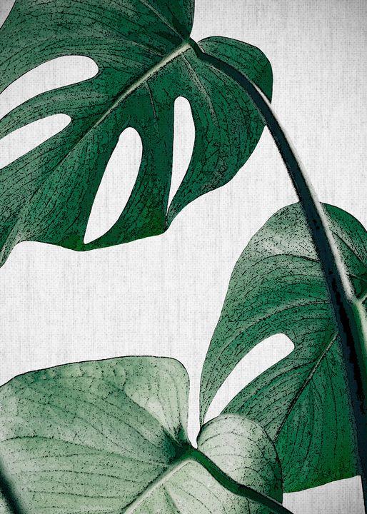 PLANTS22 - FARKI_DESIGN