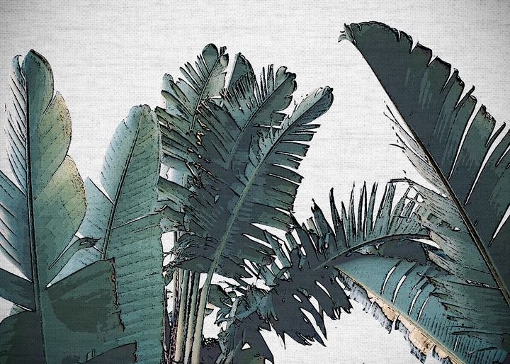 PLANTS23 - FARKI_DESIGN