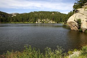Lake in the Black Hills
