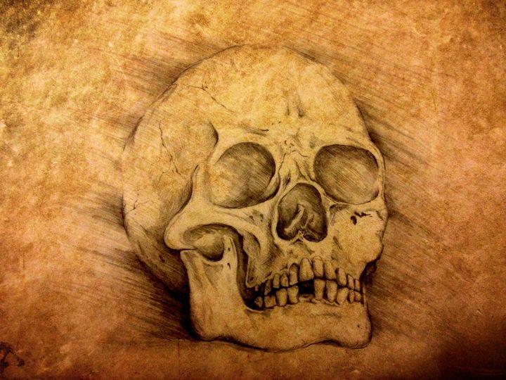 Skull study - Matte Hue Innovations