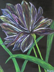Color Blossom - Jahaske